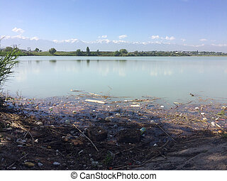 Environmental disaster. The pollution of the lake, the pond. The accumulation of plastic bottles, cans, wooden debris floating in the water. Eco.