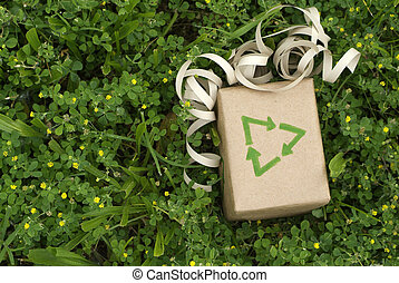 Eco friendly gift wrapped in recycled paper surround by green plants
