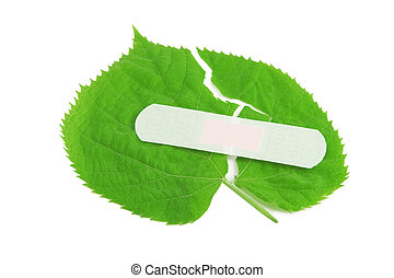 Environment protection, green leaf bandaged with white patch