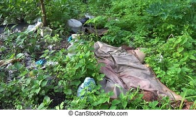 Environmental problem. Garbage dump in the forest