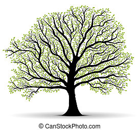 Environmental Protection green tree - big vector tree...