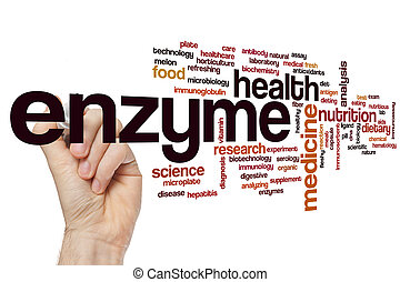 Enzyme word cloud