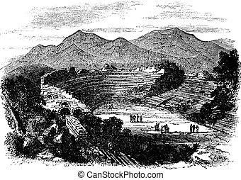 Ephesus in Izmir, Turkey, vintage engraving