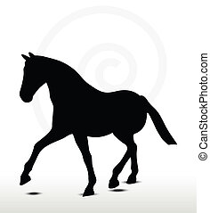 horse silhouette in Parade Walk position - EPS 10 Vector -...