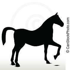 horse silhouette in Show Horse position - EPS 10 Vector -...