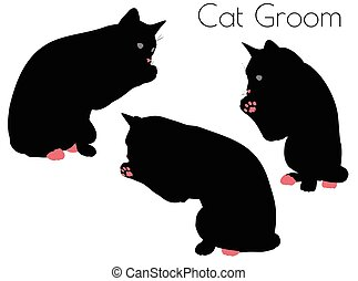cat silhouette in Groom Pose