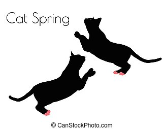 cat silhouette in Spring Pose