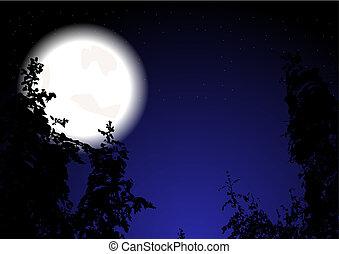 (eps, bois, 10), nuit