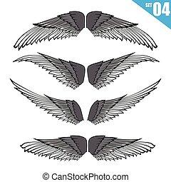 eps10, illustratie, element, vector, ontwerp, verzameling, 004, vleugels