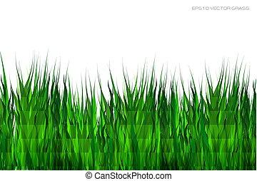 eps10, illustration., רקע., וקטור, לבן ירוק, דשא
