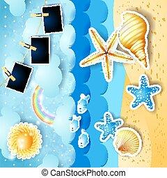 eps10, marine, photo, illustration, seashells, vecteur, frames., papier, soleil