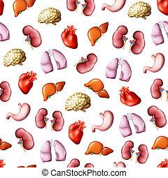 eps10, organs, mönster, seamless, inre, mänsklig