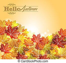 eps10, vendange, feuilles, automne, arrière-plan., transparence, file.