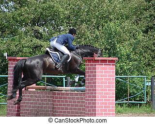 eqüestre, desportista, ligado, saltar cavalo, sobre, barreira