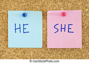 equality - blue and pink paper in a corkboard