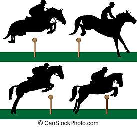 equestre, -, saltare