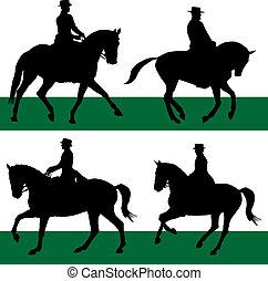 Equestrian - Dressage - equestrian sport of dressage horses
