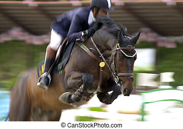 Equestrian - Image of an equestrian competitor in action...