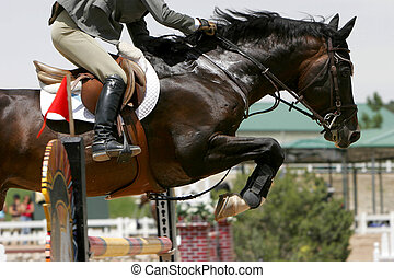 Closeup of a horse and rider working hard to clear a high obstacle during an equestrian jumping event (shallow focus).