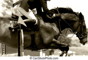 Equestrian Show Jumping Action - Close up of the power and...