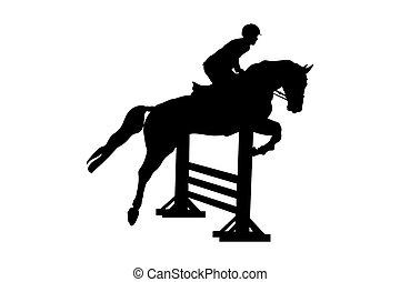 equestrian sport male rider