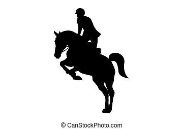 equestrian sport man rider