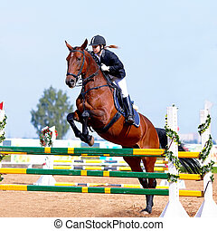 Overcoming of an obstacle. - Equestrian sport. Overcoming of...