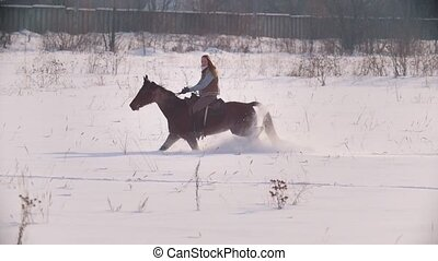 Equestrian sport - rider woman on horse galloping in snowy...