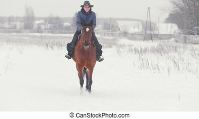 Equestrian sport - rider woman on horse walking in snowy...