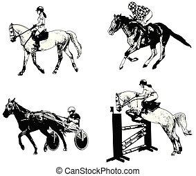 equestrian sports set, sketch illustration