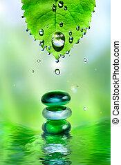equilibratura, terme, baluginante, pietre, con, foglia, e, gocce acqua, su, luce, fondo