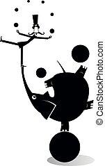 equilibrist, palle, illustrazione, elefante, gioco destrezza, baffi, uomo