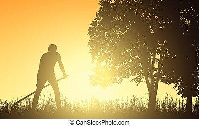 equipaggi falciatura, erba, con, uno, falce, sotto, il, albero, a, alba