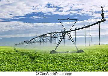 equipamento irrigação, ligado, cultive campo