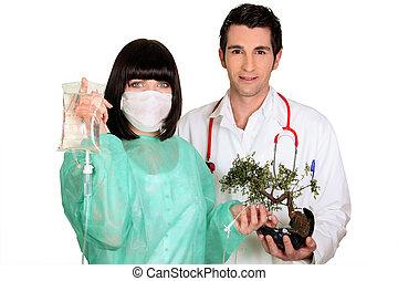equipe médica, anexando, um, gotejamento, para, um, árvore bonsai