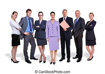 equipe negócio, sete pessoas, isolado