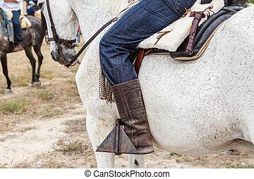 equipment., dreikönigsfest, details, spanischer , horses.,...