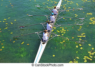 equipo, remo, cuádruple, verde, hombres, agua