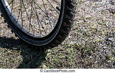 equitação bicicleta, em, um, parque cidade, ligado, encantador, outono