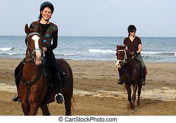 equitación, caballo, omán