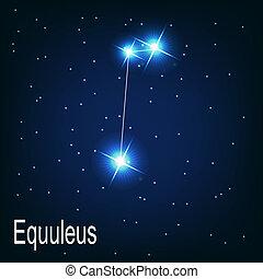 """equuleus"""", """", hvězda, sky., ilustrace, vektor, večer, souhvězdí"""