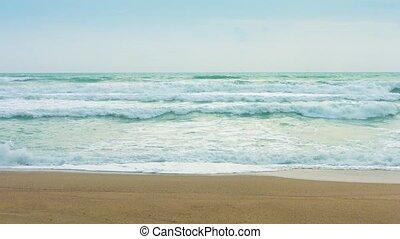 erős, tengerpart, homokos, lenget