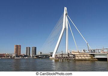 Erasmusbridge in Rotterdam