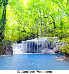 erawan, 폭포, 에서, thailand., 아름다운, 자연, 배경