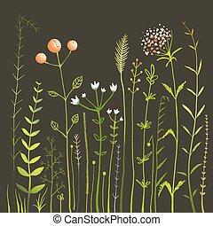 erba, collezione, campo, nero, fiori selvaggi