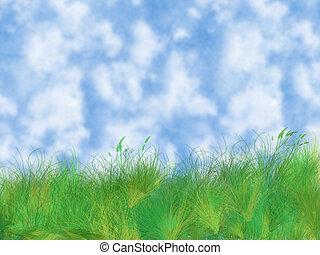 erba, e, cielo