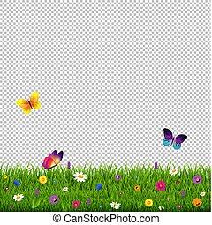 erba, e, fiori, trasparente, fondo
