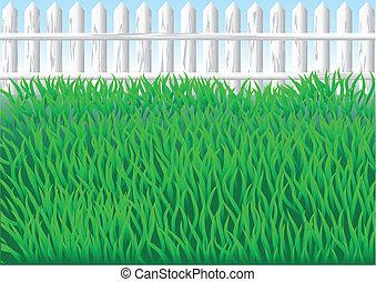 erba, giardino