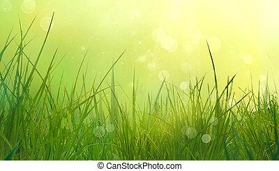 erba, in, primavera