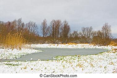 erba, lama, neve, attraverso, fiume verde